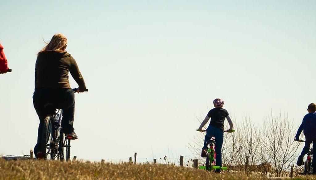 bikes02-small