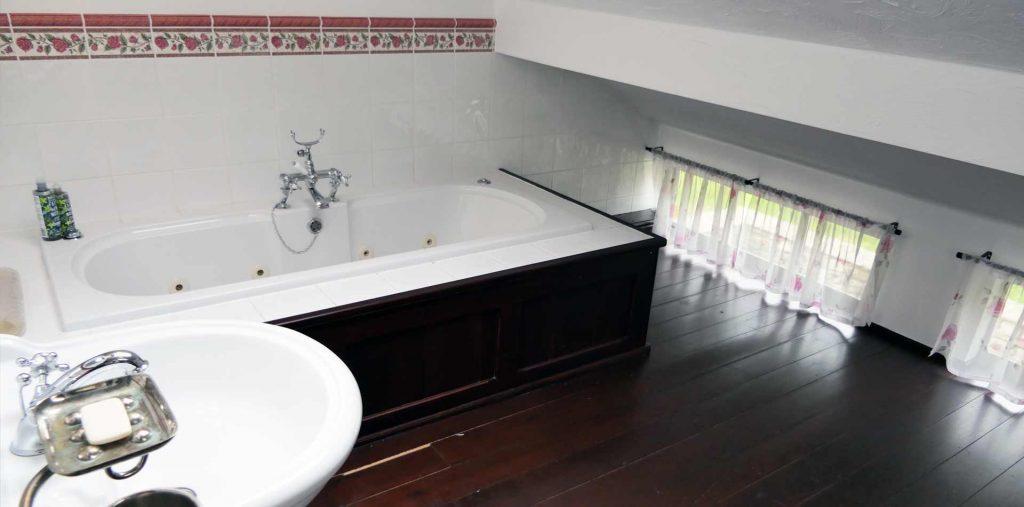 Family bathroom hydrojet bath