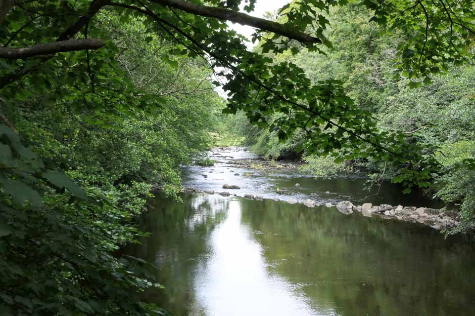 The River Dee by Mill Lane